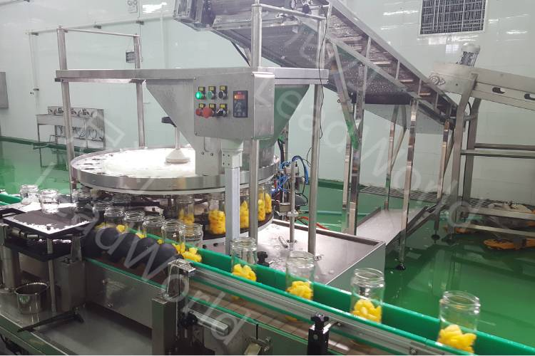 Diced Food Filling Machine