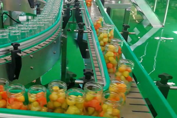 Chain Plate Conveyor Line